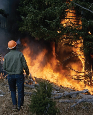 Wildfire Worker