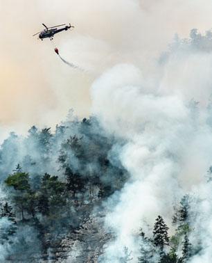 S-185 Fire Entrapment