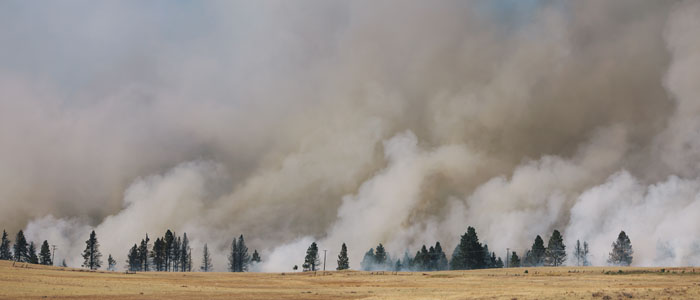 Up In Flames -Do Wildfires Threaten Your Community?